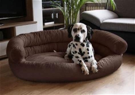 Hundebetten für große Hunde  Testsieger, Preisvergleiche