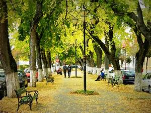 The most romantic boulevard in Europe | The Happy Hermit