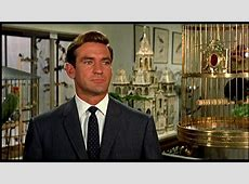 The Birds ***** 1963, Tippi Hedren, Rod Taylor, Suzanne