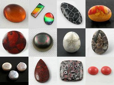 Organic Gemstones Amber, Pearl, Jet, Dinosaur Bone And More