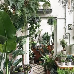 Spotlight on: Conservatory Archives