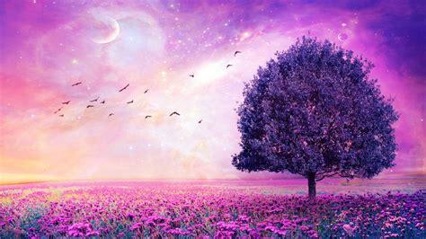 Free Picture Desktop by Purple Flower Wallpaper Free For Desktop