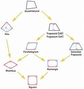 Quadrilaterals - Square, Rectangle, Rhombus, Trapezoid ...