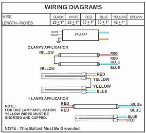 Fulham Wh3 120 L Wiring Diagram Gallery