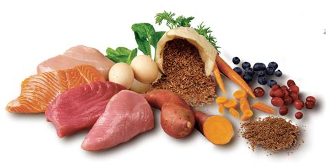 natural dog food nature select dog foodcom
