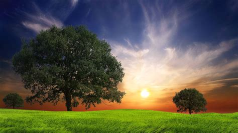 Awesome Nature Backgrounds - Wallpaper Cave