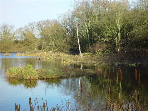 ponds pictures natural pond pictures