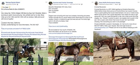 horse ads examples horses social selling ad permission screenshot nation