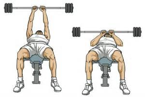 Decline Bench Grip Triceps Press by The Ultimate 45 Minute Workout For Gaining Triceps Mass
