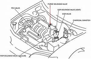 Mazda 3 Evap Purge Valve Location  Wiring  Amazing Wiring