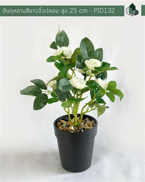 ต้นกุหลาบสีขาวจิ๋วปลอม สูง 25 CM - pimarn