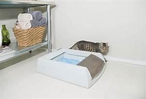Litiere Chat Sans Odeur : maison de toilette pour chat sans odeur pour 2019 notre ~ Melissatoandfro.com Idées de Décoration