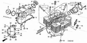 Honda Atv 2009 Oem Parts Diagram For Cylinder Head