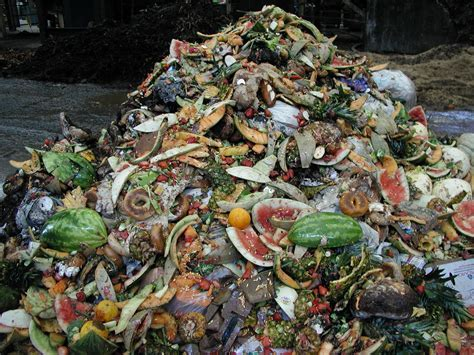 Public comment on draft food scraps policy begins   Metro