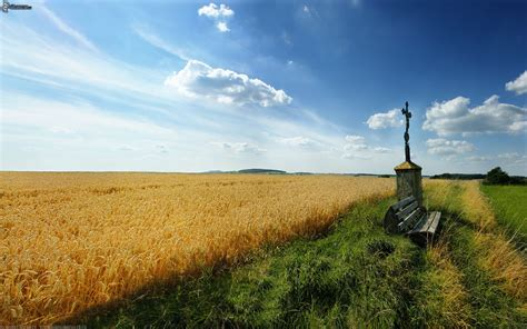 12 Awe-Inspiring Crop Field and Farm Pictures