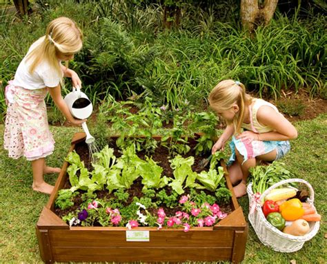 How To Grow Your Own Vegetables With Kids