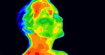 Thermal Imaging Brain Digital