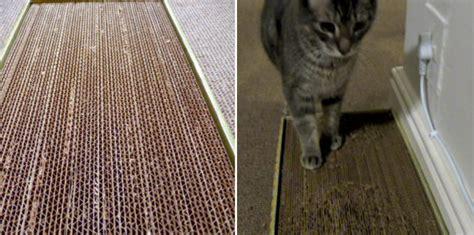 cardboard cat scratcher diy crafts