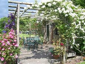 Treillis Pour Plantes Grimpantes : plantes grimpantes pour pergola 20 id es romantiques ~ Premium-room.com Idées de Décoration