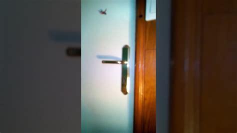 comment ouvrir une porte claquee 28 images ouvrir une