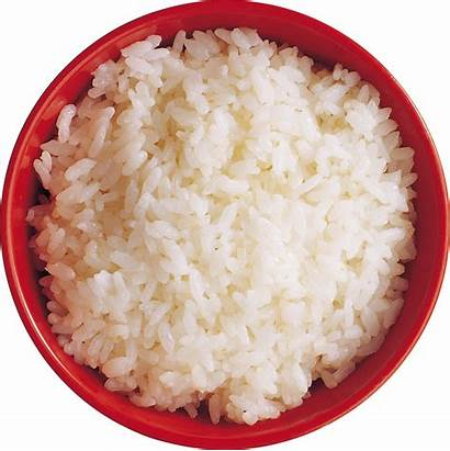 Rice Transparent Background Clipart Cooked Bowl Computer