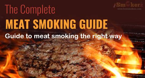 meat smoking beginners guide infographic