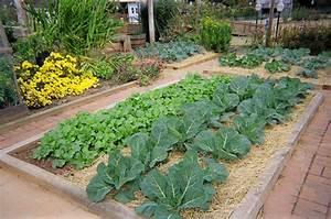 allotment flower garden ideas 12 terrific garden With garden allotment ideas