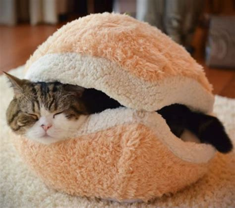burger bed the cat burger bed is a pillow bed for your cat that looks