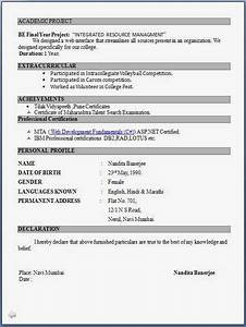 resume format pdf for freshers latest professional resume With job resume format pdf download free
