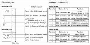 Kia Niro   Heated Oxygen Sensor  Ho2s  Schematic Diagrams   Engine Control System