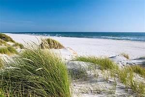 Strandbilder Auf Leinwand : gegen die plastikflut im meer nabu ~ Watch28wear.com Haus und Dekorationen