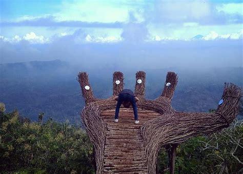 indahnya panorama pinus pengger  yogyakarta okezone