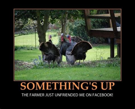 Best Thanksgiving Memes - the best thanksgiving memes this year iscrap app