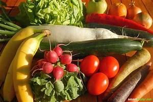 Gemüse Richtig Lagern : l nger frisch und knackig so lagerst du obst und gem se richtig ~ Whattoseeinmadrid.com Haus und Dekorationen