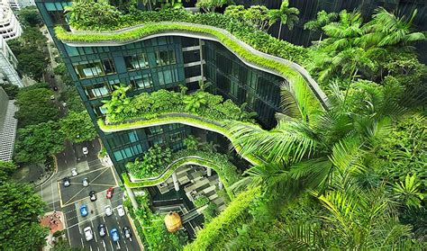 Singapore Takes First Steps Green Hypercities Intheblack