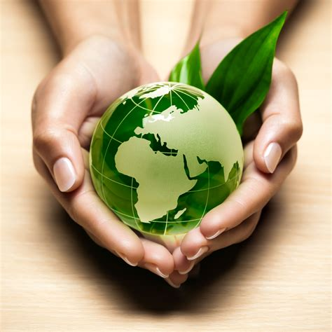 Grüne Erde De by Gr 252 N Und Sozial Wirtschaften Drei Unternehmerinnen Im