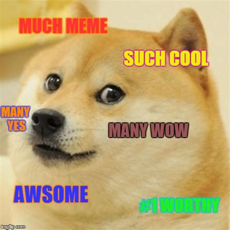 Much Dog Meme - doge meme imgflip