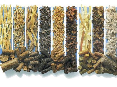 Перспективные виды биотоплива используемые для производства электрической энергии . Статья в журнале Молодой ученый