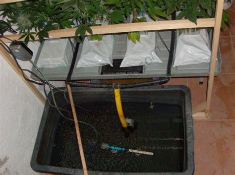 como montar  sistema de cultivo de marihuana hidroponico