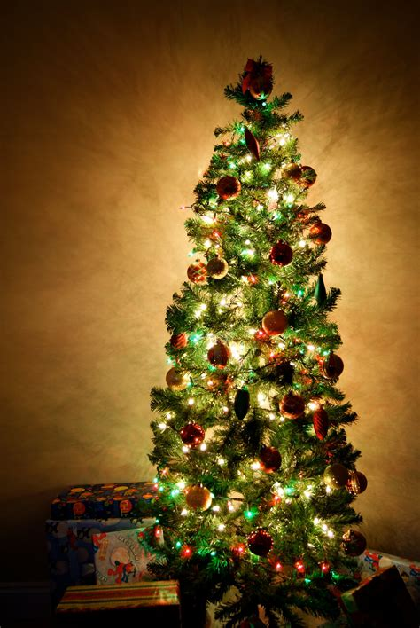 how do you decorate a christmas tree how to afford christmas this year