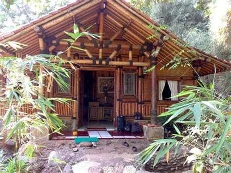 simple bamboo house design houses pinterest design