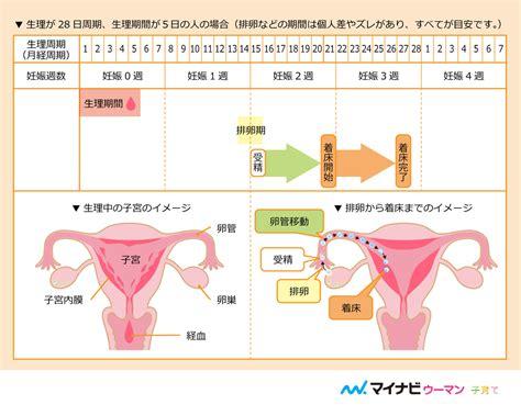 生理 並み の 出血 妊娠 体験 談