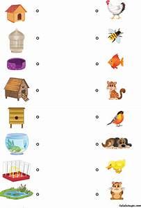 Jeux Enfant 4 Ans : chacun chez soi jeu ducatif pour enfants de 4 ans et ~ Dode.kayakingforconservation.com Idées de Décoration