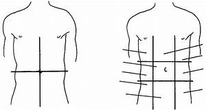 2 Anatomical Areas Of The Abdomen   A  Quadrants   B