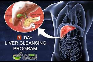 Liver Cleansing  Natural 7