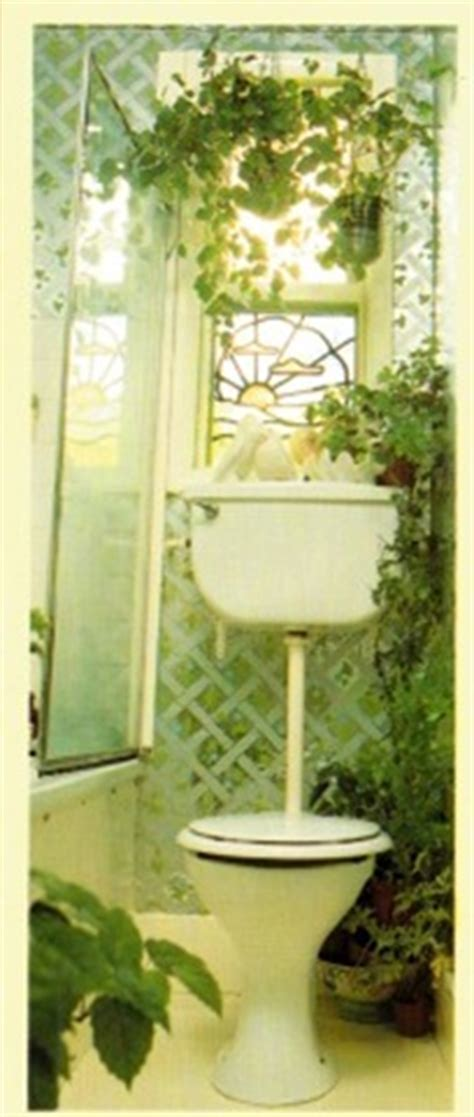 plants for bathroom without windows best plants for the bathroom