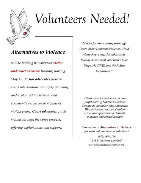 alternatives  violence  volunteers interview