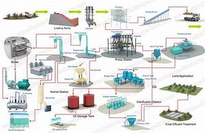 Manufacture Palm Oil Production Process Low Cost Price For
