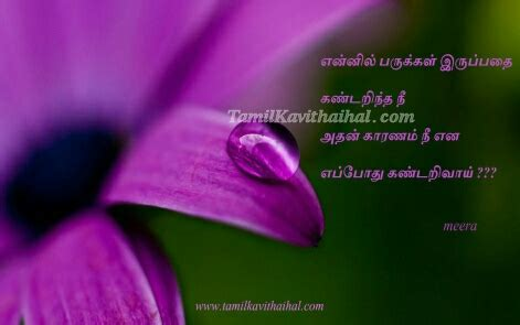 tamil quotes latest tamil quotes   kavithaigal