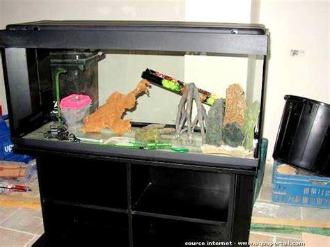 aquarium d occasion d 233 finition et explications